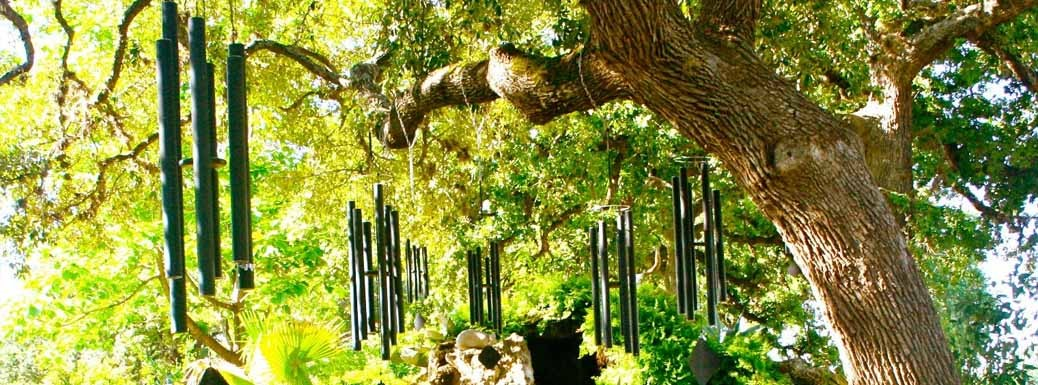 Several Music of the Spheres Wind Chimes hanging from a large tree.
